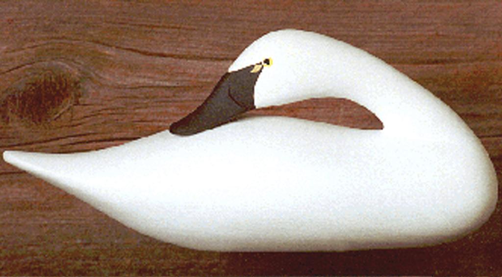 Tundra Swan Quarter Size Sleeper Bodt Decoys